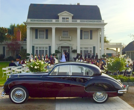 Venue: The Manor Estate